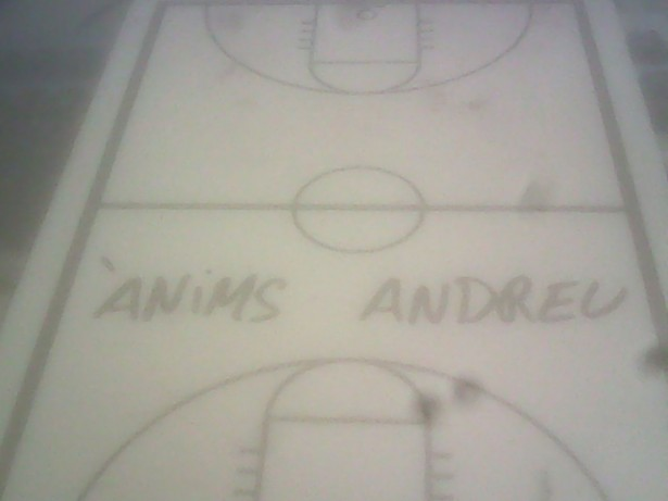 anims Andreu Cervera
